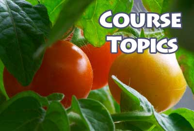course topics foliar sprays