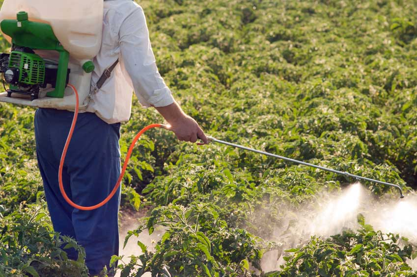 Foliar Feeding for Large and Small Growers