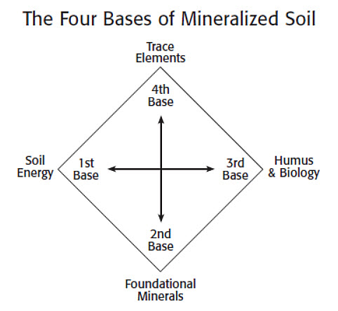 four bases of soil mineralization
